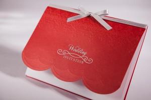 wedding-invitation-68-blushline-WR68202-01